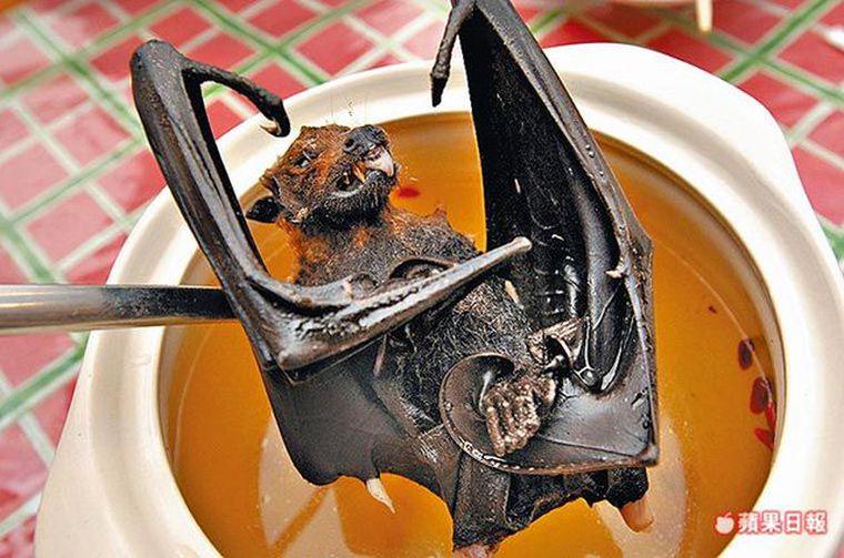 imagen de murciélago en mercado de china